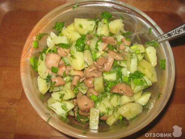 салат деревенский рецепт без грибов соответствии