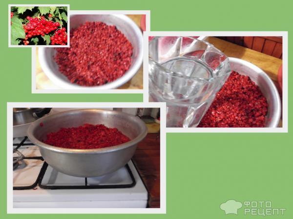 Рецепт приготовления наливки на калине