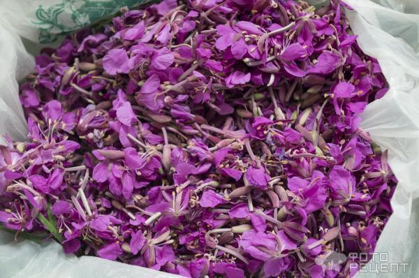 Древнерусский напиток Иван-чай фото