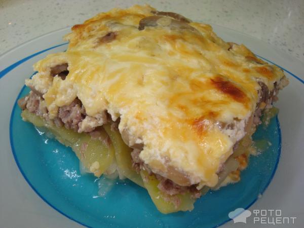 Мясо по-французски с куриным фаршем рецепт
