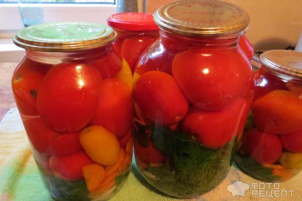 Консервирование помидор в домашних условиях рецепты 545