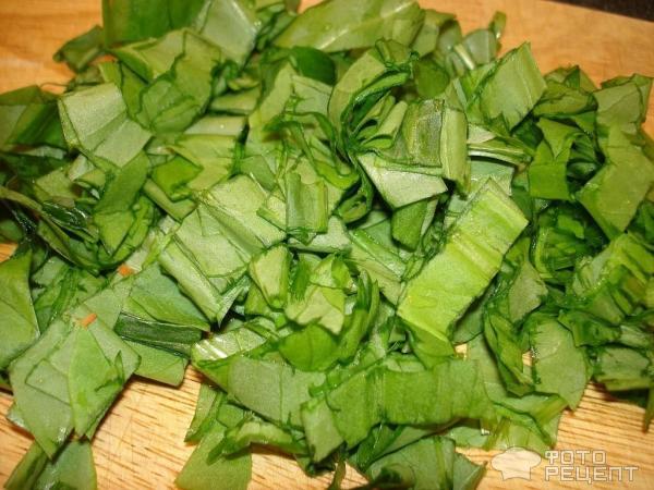 Зеленый борщ со щавелем фото