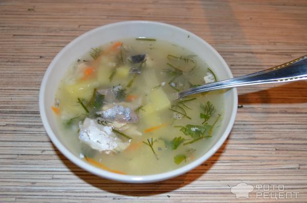 Суп скумбрии консервы рецепт с фото