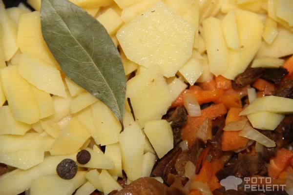 Суп с сушеными белыми грибами и плавленным сыром фото