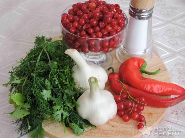 рецепт аджики из красной смородины