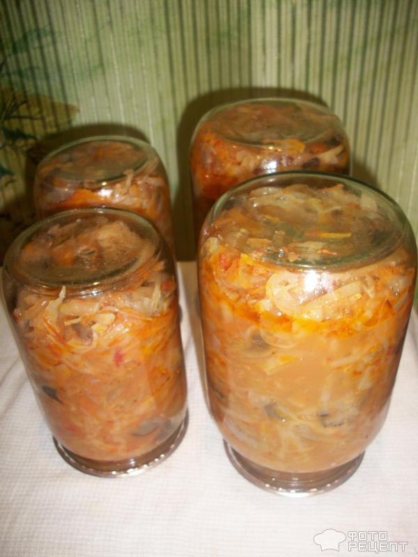Грибная солянка на зиму рецепты с фото