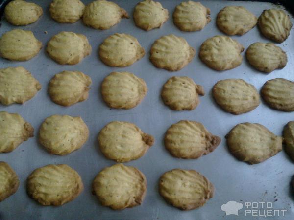 печенье ракушки рецепт с фото
