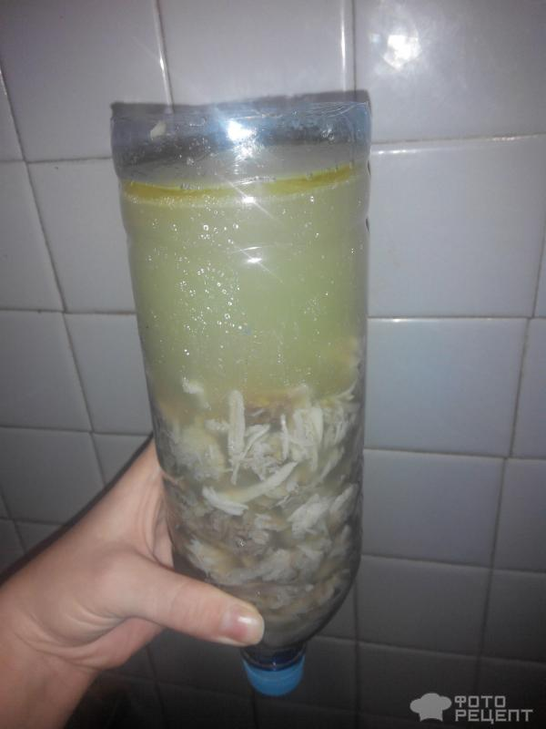 Рецепт холодца в бутылке с фото пошагово