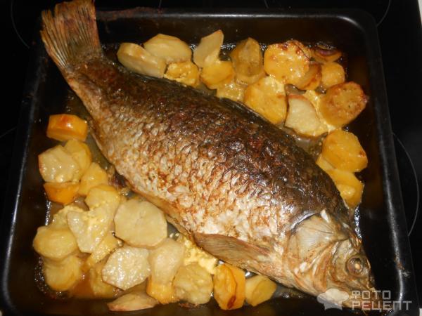 как готовить сазан