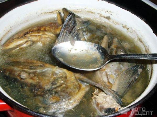 Как вкусно запечь горбушу рецептов
