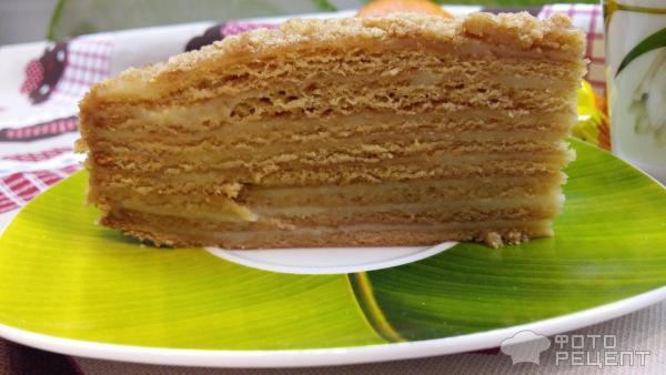 Торт медовый с заварным кремом фото