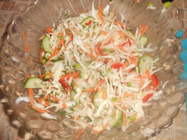 Салат весенний рецепт с из капусты и