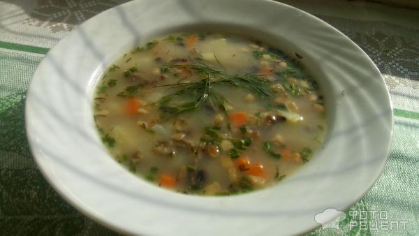 Грибной суп на бульоне с салом фото