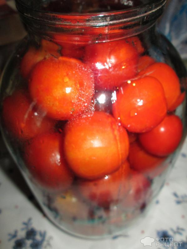 Помидоры в томате на зиму в домашних условиях 635