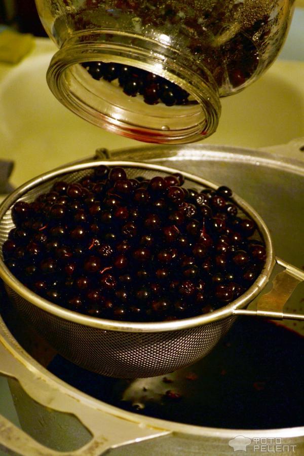 Рецепты из черноплодной рябины в домашних условиях