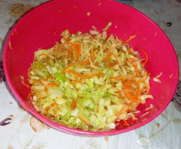 Салаты из свежей капусты и помидоров рецепты с