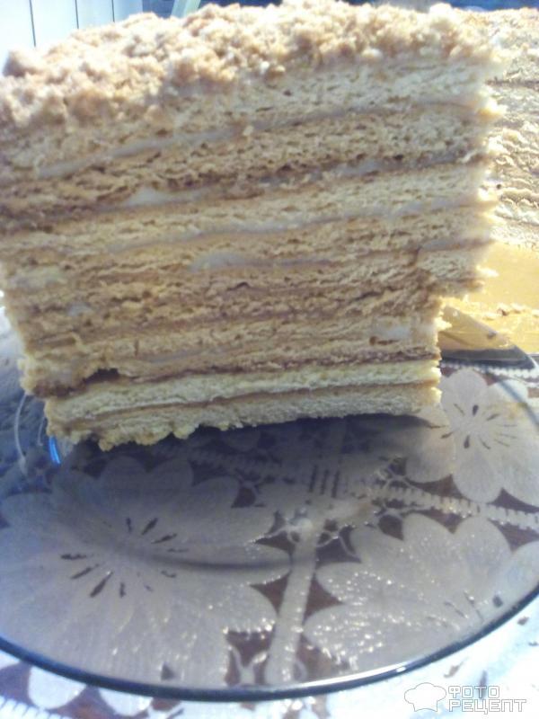 Медовик торт со сметанным кремом пошаговый рецепт с фото