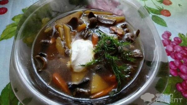 Ароматный суп из сушеных грибов