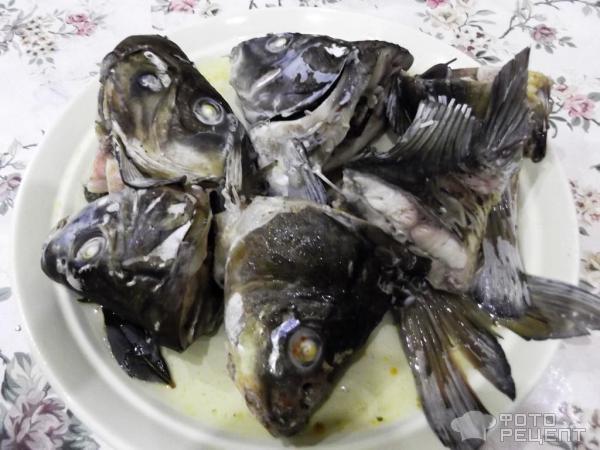 Холодец из рыбы фото