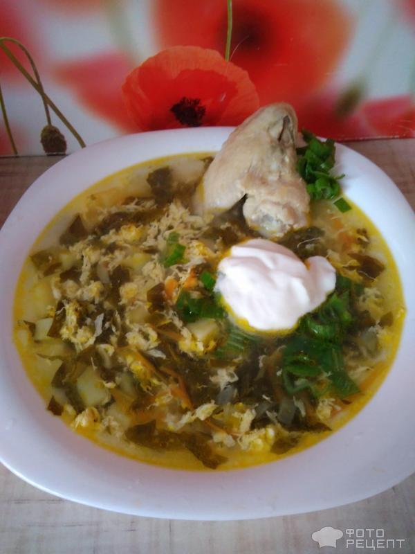 Суп на куриных крылышках Кудрявый щавель фото