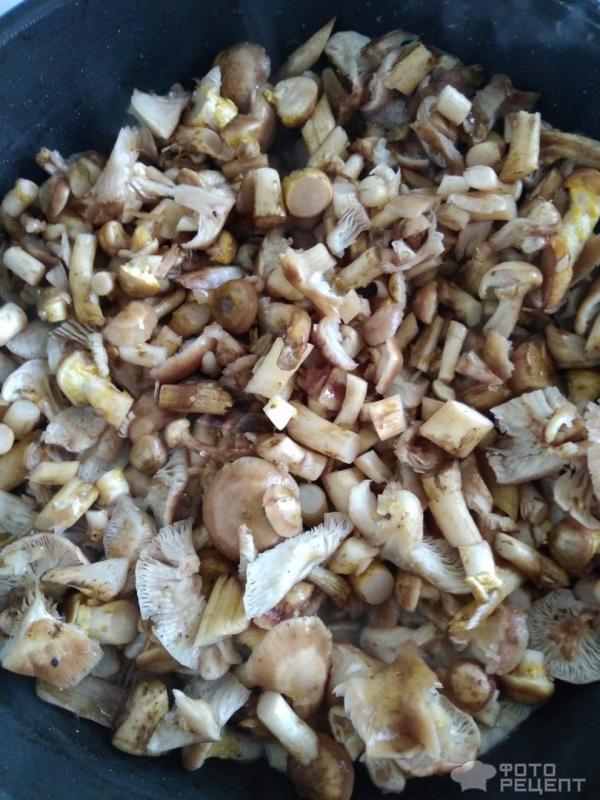 Жареные грибы фото
