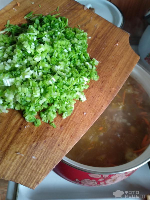 Гречневый суп фото