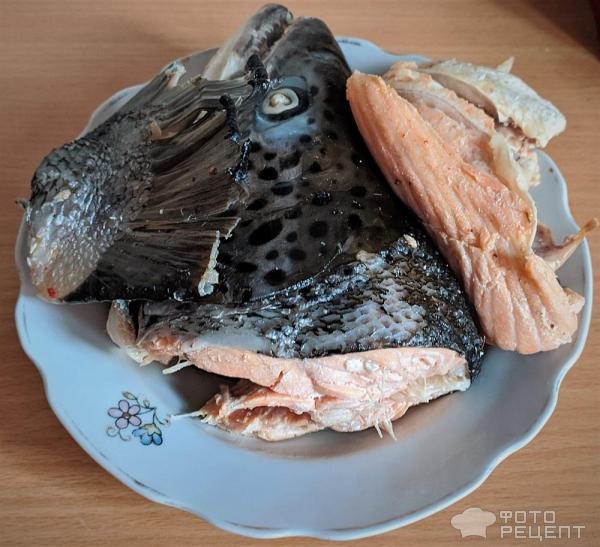 Уха из лосося фото