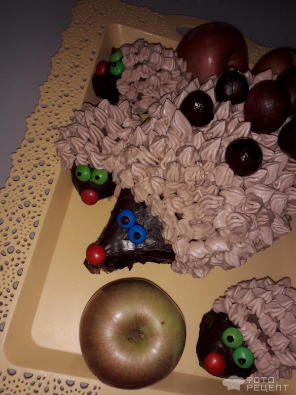 Торт Ежик фото