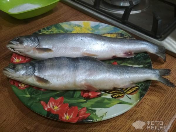 Рыбка, запеченная в духовке фото