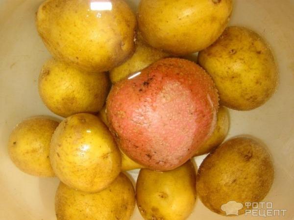 Картофель по-деревенски в духовке фото