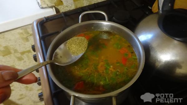 Фасолевый суп с крольчатиной фото