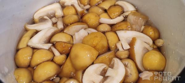 Как приготовить чешуйчатку золотистую