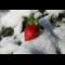 Фото Заготовка клубники на зиму