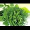Фото Сухая засолка зелени