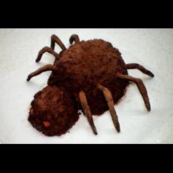 "Рецепт: Торт ""Паук"" на Хэллоуин"