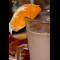 """Фото Напиток """"Апельсиновый шоколад"""""""