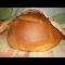 Фото Горчичный хлеб