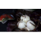 "Фото Салат ""Тухлые яйца"""