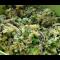 Фото Начинка из белокочанной капусты для пирожков и пирогов
