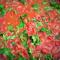 Фото Лобио с томатным соком