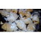 Фото Рогалики с ореховой начинкой