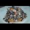 Фото Треска с черным рисом