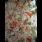 Фото Рис с цветной капустой, морковью и горошком