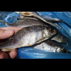 Рецепт: Рыба речная вяленая
