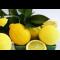 Фото Лимоны по-мароккански