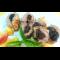 Фото Свиные рулетики с черносливом и сыром