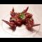 Фото Куриные крылья в маринаде с красным луком