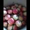 Фото Варенье из райских яблок