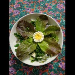 Рецепт: Салат с китайской редькой и яйцом