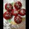 Фото Красные булочки для бургеров
